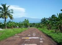 Der Kamerun-Berg
